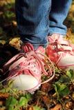 Espadrilles colorées avec des dentelles Photo stock