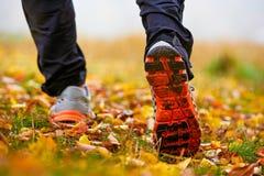 Espadrilles dans des feuilles d'automne Photographie stock libre de droits