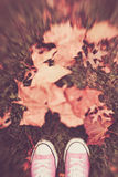 Espadrilles dans les feuilles Photographie stock libre de droits