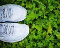 Espadrilles de chaussures de sports sur l'herbe verte fraîche Images libres de droits