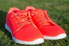 Espadrilles de chaussures de sports sur l'herbe verte fraîche Photo stock