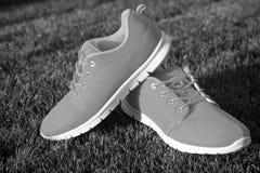Espadrilles de chaussures de sports sur l'herbe verte fraîche Photographie stock libre de droits