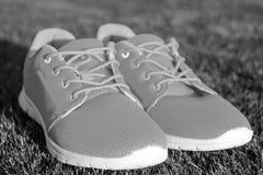 Espadrilles de chaussures de sports sur l'herbe verte fraîche Image stock
