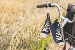 Espadrilles de jeans sur la bicyclette Image libre de droits
