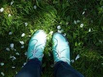 Espadrilles de la jeunesse, chaussures sur l'herbe verte pendant le jour d'été serein ensoleillé, espadrilles classiques bleues s Images libres de droits