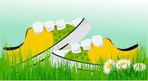 Espadrilles ensoleillées de ressort dans l'herbe Images stock