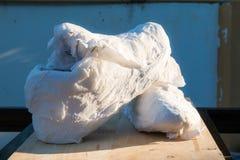 Espadrilles enveloppées en papier de soie de soie, Photos stock