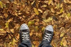 Espadrilles et feuilles de jaune Photo libre de droits