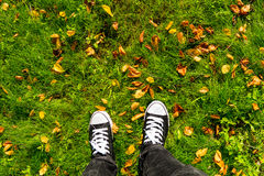 Espadrilles et feuilles sur l'herbe Photographie stock