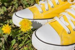 Espadrilles et fleurs jaunes de ressort Images stock