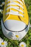 Espadrilles et fleurs jaunes de ressort Images libres de droits