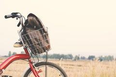 Espadrilles et sac de jeans sur la bicyclette Images stock