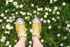 Espadrilles jaunes décorées des marguerites Photographie stock