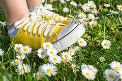 Espadrilles jaunes décorées des marguerites Photo stock