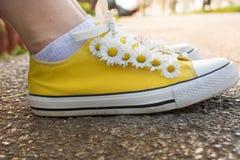 Espadrilles jaunes décorées des marguerites Image libre de droits