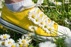 Espadrilles jaunes décorées des marguerites Photos libres de droits