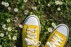 Espadrilles jaunes dans un domaine dasiy Photos stock