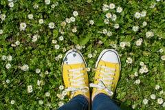 Espadrilles jaunes dans un domaine dasiy Première vue de personne Images libres de droits