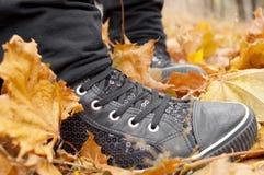 Espadrilles noires dans les feuilles Photo libre de droits