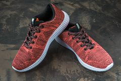 Espadrilles pour la femme Chaussures pour la forme physique et le sport Image stock