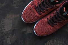 Espadrilles pour la femme Chaussures pour la forme physique et le sport Image libre de droits