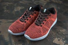 Espadrilles pour la femme Chaussures pour la forme physique et le sport Photographie stock