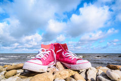 Espadrilles roses sur la côte Photo libre de droits