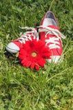 Espadrilles rouges avec la fleur Photos stock