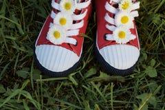 Espadrilles rouges d'enfant avec des fleurs dans l'herbe Images stock