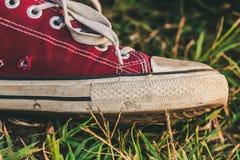 Espadrilles rouges sur l'herbe Photos libres de droits