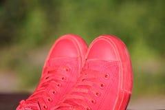 Espadrilles rouges sur le fond vert Image libre de droits