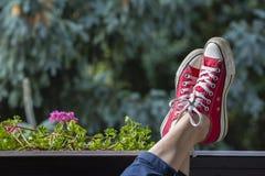 Espadrilles rouges sur les jambes d'une femme dans la perspective de nature Photos stock