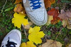 Espadrilles sur des feuilles d'automne Photo stock