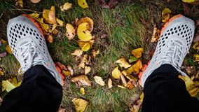 Espadrilles sur l'herbe d'automne Image stock