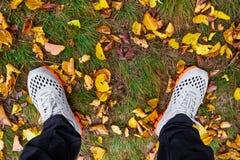 Espadrilles sur l'herbe d'automne Images libres de droits