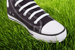 Espadrilles sur l'herbe verte Image stock