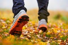 Espadrilles sur l'homme dans des feuilles d'automne Photos stock