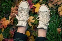 Espadrilles sur les feuilles tombées Photographie stock