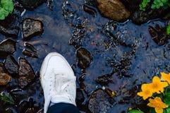 Espadrilles sur un fond de faune Les chaussures femelles blanches sur leurs pieds dehors se tiennent dans l'eau Espadrilles plan  Photographie stock libre de droits