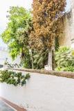 Espagnol, architecture et rues des fleurs blanches à Marbella A Images stock