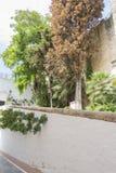 Espagnol, architecture et rues des fleurs blanches à Marbella A Photographie stock libre de droits
