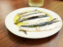 Espagnol Boquerones (anchois marinés en huile) Photographie stock