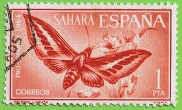 ESPAGNOL SAHARA de timbre Images stock