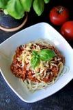 Espaguete Foto de Stock Royalty Free