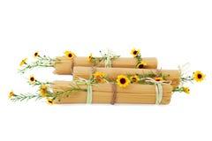 Espaguete italiano decorado com as flores isoladas Imagens de Stock Royalty Free