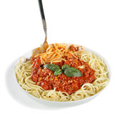 Espagueti boloñés Imagen de archivo libre de regalías