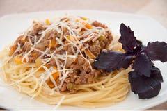Espagueti boloñés con queso Fotos de archivo libres de regalías