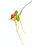 Espagueti con la salsa y albahaca en fork Imágenes de archivo libres de regalías