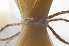 Espaguetis Imagenes de archivo