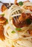 Espaguetis con los mízcalos y vertical macra de la bifurcación Foto de archivo